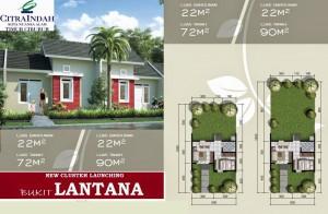 lantana homepage